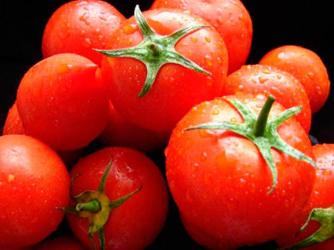 Томаты Кировской селекции лучшие сорта для теплиц и открытого грунта
