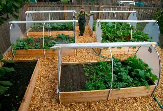Мини-теплицы для дачи Огородник