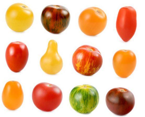 формы помидор черри