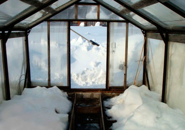 Набрасывание снега в теплицу