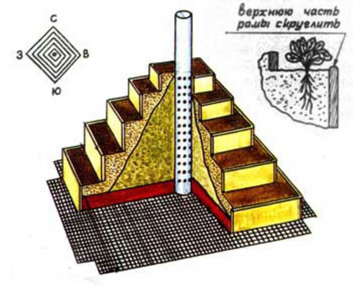 Клубника в пирамидах