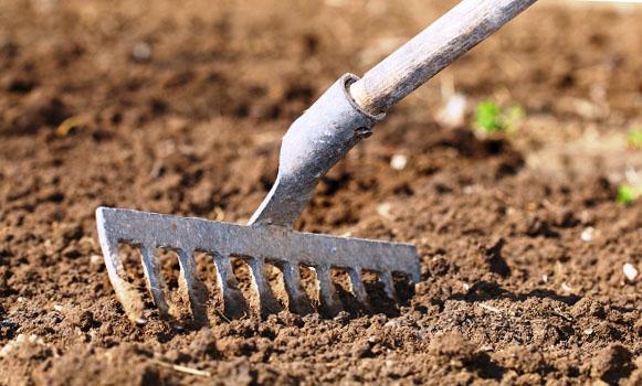 подготовка почвы к посадке свеклы