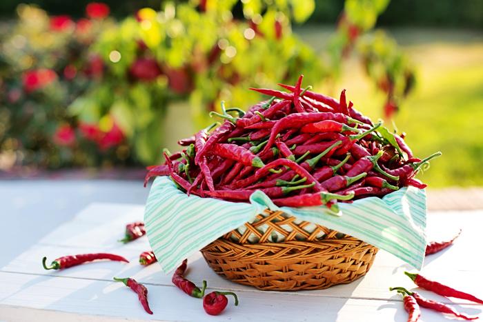 Как посадить семена острого перца