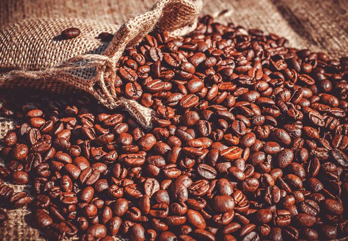 Как вырастить кофейное дерево дома?
