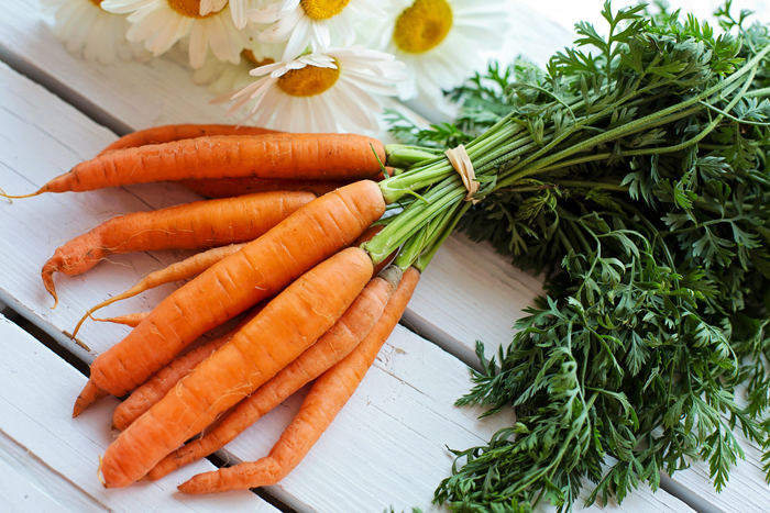 Как получить семена моркови в домашних условиях