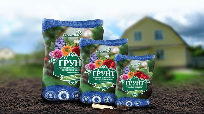 Как выращивать растения из семян в домашних условиях?